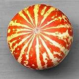 10 Rare Tiger Melon Seeds | Exotic Garden Fruit Seeds to Plant |