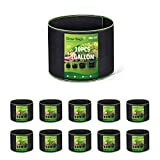 Delxo 10 Pack 1 Gallon Grow Bags Heavy Duty Aeration Fabric Pots Thickened Nonwoven Fabric Pots Plant Grow Bags with Handles