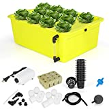 GROWNEER 11 Sites Hydroponics Grower Kit Household DWC Hydroponic System Growing Kits with Air Pump and Hydroponics Tools for Vegetables, Flowers
