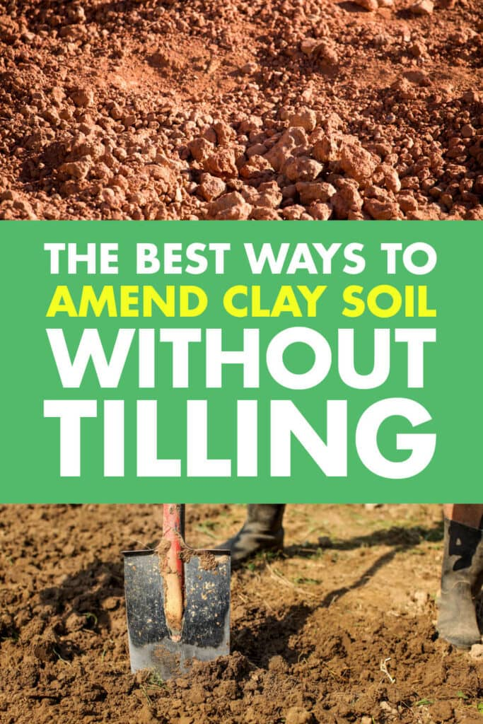 Two pictures of clay soil one with a shovel sticking in the ground. Text reads the best way to amend clay soil without tilling.