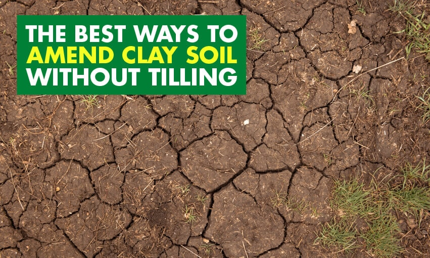 A picture of dry soil with cracks in it. Text reads The best ways to amend clay soil without tilling.
