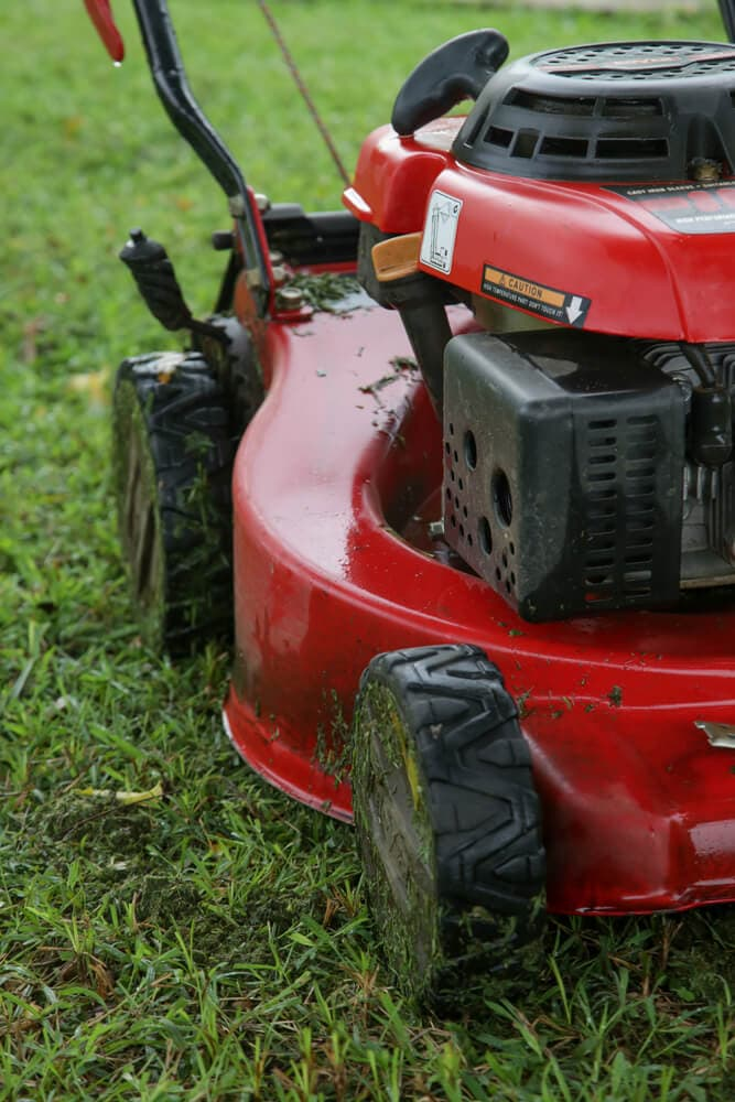 A picture of a red, push lawn mower that appears to be wet.