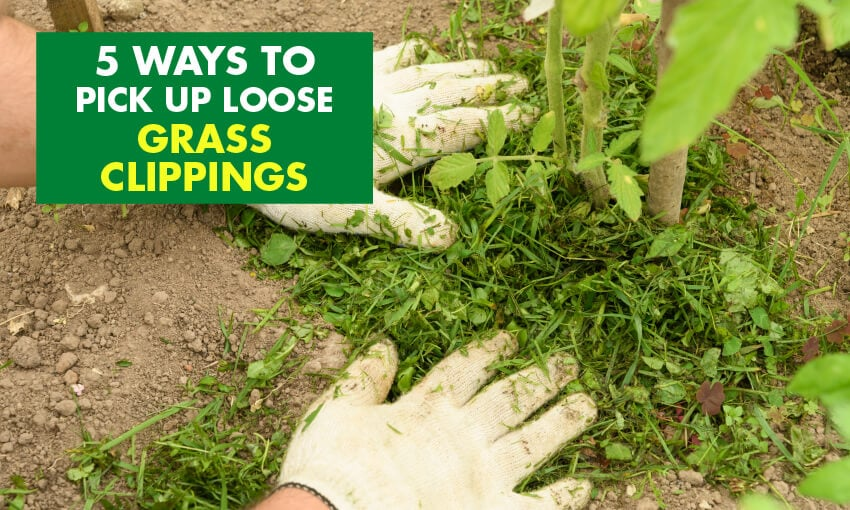 A picture of two hands on top of grass clippings. Text reads 5 ways to pick up loose grass clippings.
