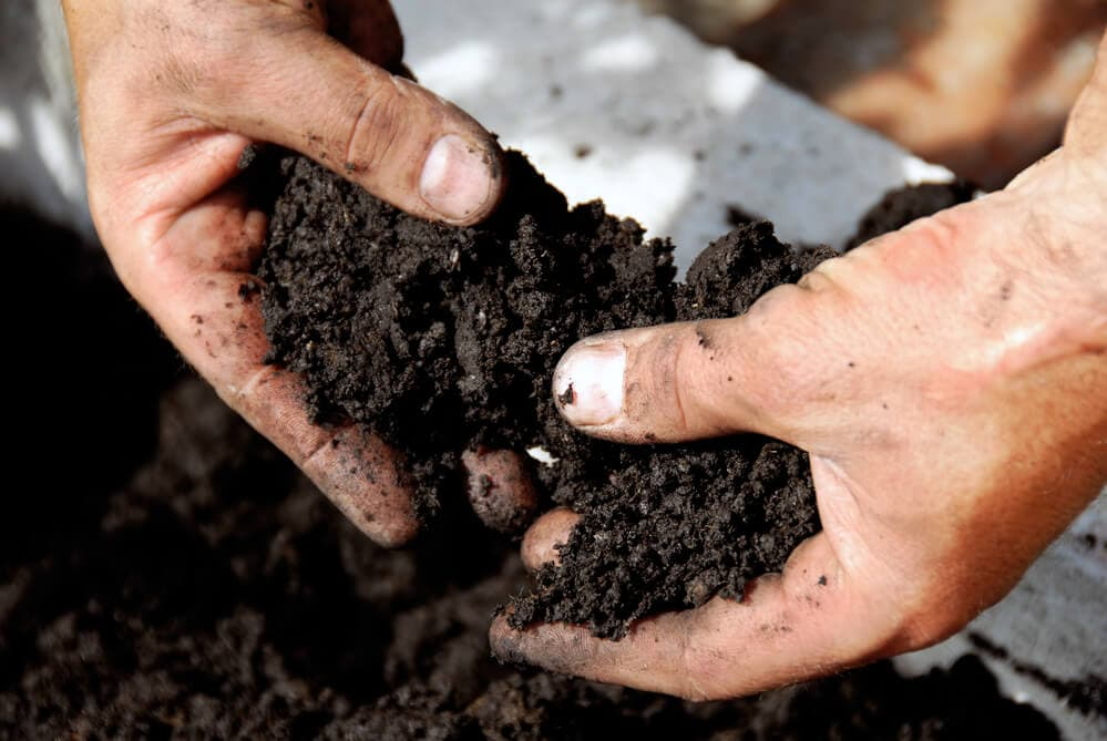 A picture of hands holding soil over a garden bed.